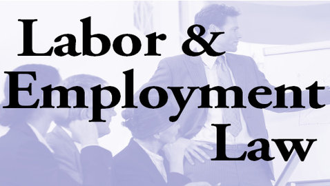 Learning Employment Law in the Midst of Layoffs