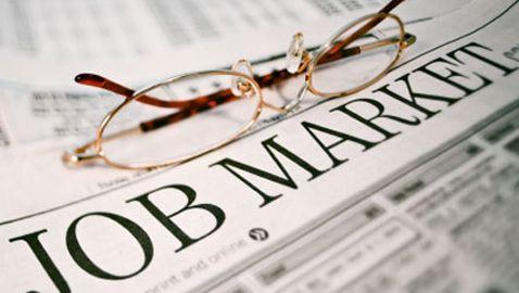 November Jobs Report Released