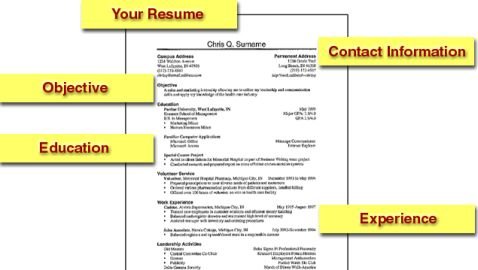False Information on Resumes a Common Occurrence